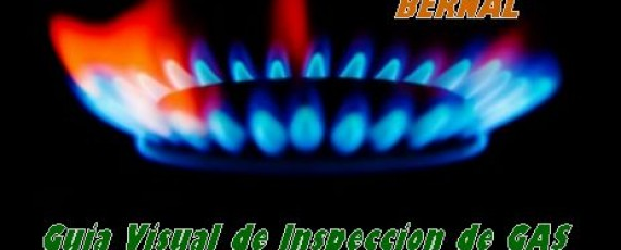 Inspeccion de gas Vantec